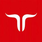 jetbull-logo