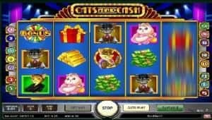 cats and cash screenshot 2